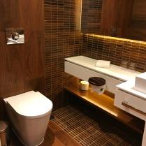 Living room toilet