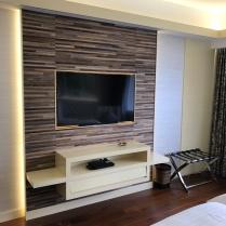 TV in masterbedroom