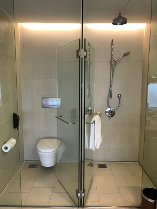 Shower + toilet