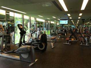 Cardio + free weights